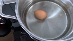 Gekookte eieren in de pan stock video