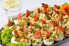 Gekookte eieren met het bovenste laagje van de vissenroom Royalty-vrije Stock Afbeelding
