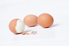 Gekookte eieren op witte achtergrond Royalty-vrije Stock Afbeelding