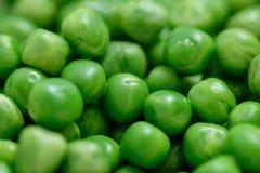 Gekookte groene erwten Stock Afbeeldingen