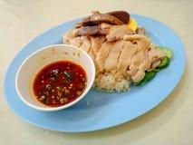 Gekookte kip en rijst stock afbeelding