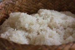 Gekookte kleverige rijst Stock Foto