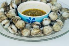 Gekookte kokkels met smakelijke saus Stock Afbeelding