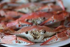Gekookte krabben Royalty-vrije Stock Afbeelding