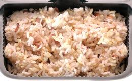 Gekookte ongepelde rijst Stock Foto