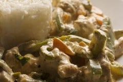 Gekookte rijst en kip Stock Foto