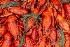 gekookte rivierkreeften bij het festival van het straatvoedsel royalty-vrije stock afbeeldingen
