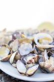 Gekookte Tweekleppige schelpdieren die op wit worden geïsoleerd Royalty-vrije Stock Foto