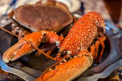 Gekookte zeekreeft en Krab Stock Afbeeldingen