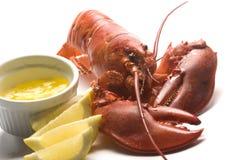 Gekookte zeekreeft met boter en citroenwiggen Stock Afbeeldingen