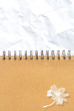 Gekrümmte (Papier) Beschaffenheit Abbildung für Ihre Auslegung Stockbilder