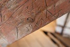 Gekraste inschrijvingen op houten stralen royalty-vrije stock foto's
