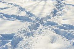 Gekreuzte Bahnen auf dem Schnee Stockbilder
