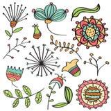 Gekritzelfarbe blüht und treibt Sammlung Blätter Lizenzfreie Stockfotos