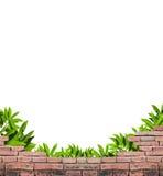 Geländer und Blätter Stockbilder