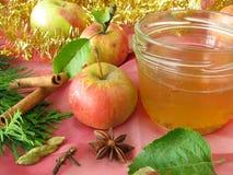 Gelée d'Apple avec les épices christmassy Images stock