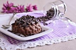 Gelée de chocolat photos stock