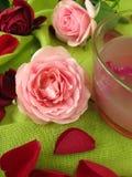 Gelée de fleur de Rose photographie stock libre de droits