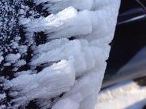 Gel d'hiver Image libre de droits