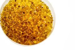 Gel di silice in una capsula di Petri fotografia stock