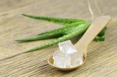 Gel di Vera dell'aloe del cubo in cucchiaio di legno Fotografia Stock