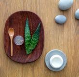 Gel di vera dell'aloe, ingrediente naturale per crema antinvecchiamento organica Fotografia Stock