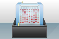 Gel electrophoresis device vector illustration Royalty Free Stock Images