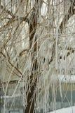 Gel et neige d'hiver Images stock