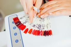 Gel gwoździa colour szyka paleta przy piękno salonem Zdjęcia Royalty Free