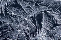 Gel sur l'hublot de l'hiver Photos stock