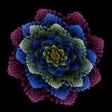 Gelaagd bloemenboeket Stock Foto's