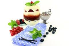Gelaagd dessert royalty-vrije stock foto's