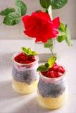 Gelaagd fruit, bes en chiazaad en yoghurtsnack stock fotografie