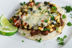 Gelaagde Plantaardige Enchiladas stock foto's