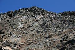 Gelaagde rots Royalty-vrije Stock Afbeelding