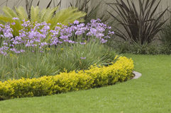 Gelaagde tuinrand Royalty-vrije Stock Fotografie