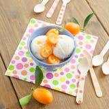 Gelado com kumquats Fotos de Stock