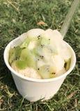 Gelado doce no gramado Imagem de Stock