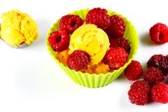 Gelado e rapsberry frescos fotografia de stock royalty free