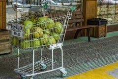 Gelado verde a vender, dinheiro de coco de R$ 6,00 de Brasil imagens de stock