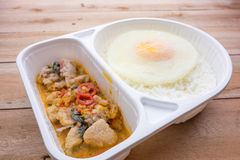 Gelata di basilico Fried Chicken e del cibo pronto dell'uovo fritto Immagine Stock Libera da Diritti