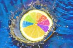 Gelaten vallen citroen Royalty-vrije Stock Foto
