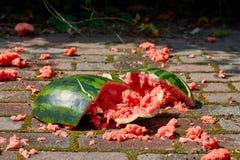 Gelaten vallen watermeloen ter plaatse Stock Foto