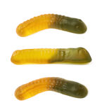 Gelatin based worm candy Royalty Free Stock Images