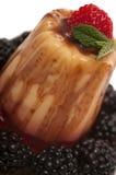 Gelatin Dessert Stock Photography