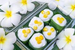 Gelatina della noce di cocco in una tazza pandan delle foglie Fotografia Stock