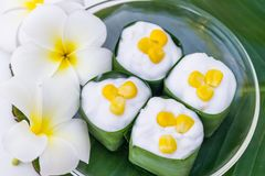 Gelatina della noce di cocco in una tazza pandan delle foglie Immagine Stock Libera da Diritti