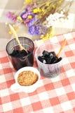 Gelatina tailandese dell'erba del dessert con zucchero marrone Fotografia Stock Libera da Diritti