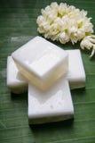Gelatina tradizionale tailandese della noce di cocco fotografia stock