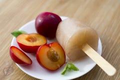Gelato alla frutta a casa a mano fatto Fotografia Stock Libera da Diritti